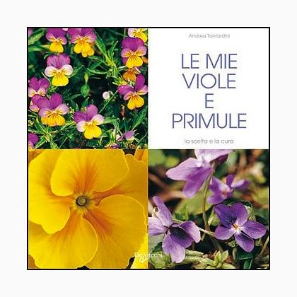 Le mie viole e primule da de vecchi editore libri for Primule da colorare
