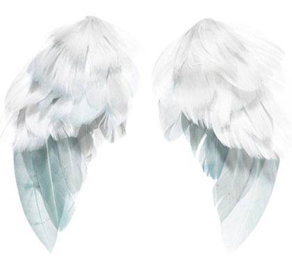 Tilda Angel Wings 4 Pieces From Tone Finnanger Tilda