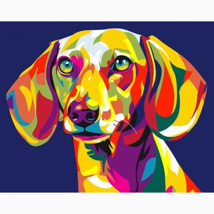 Rainbow dachshund from artventura paint by numbers for Pre printed canvas to paint for adults
