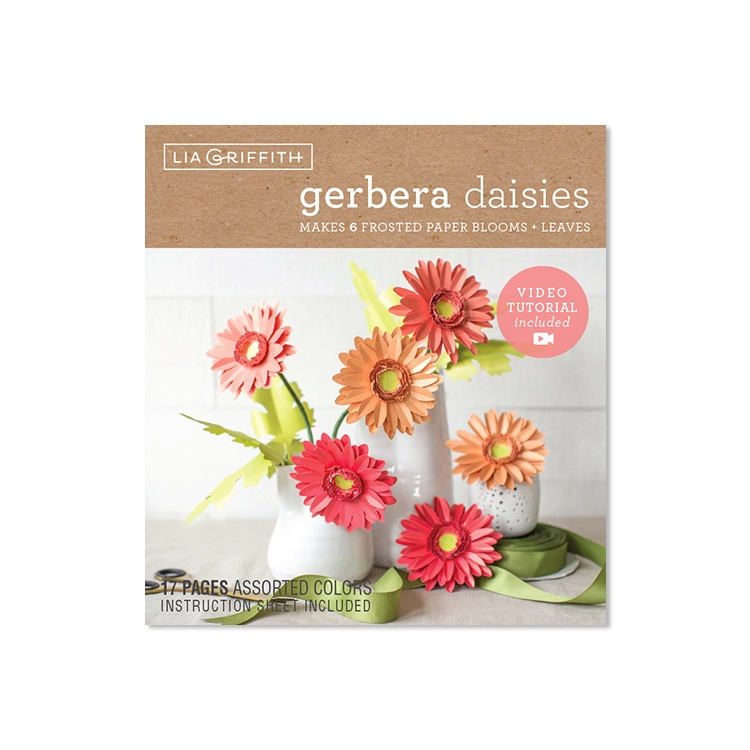 Gerbera Daisies Frosted Paper Flower Kit